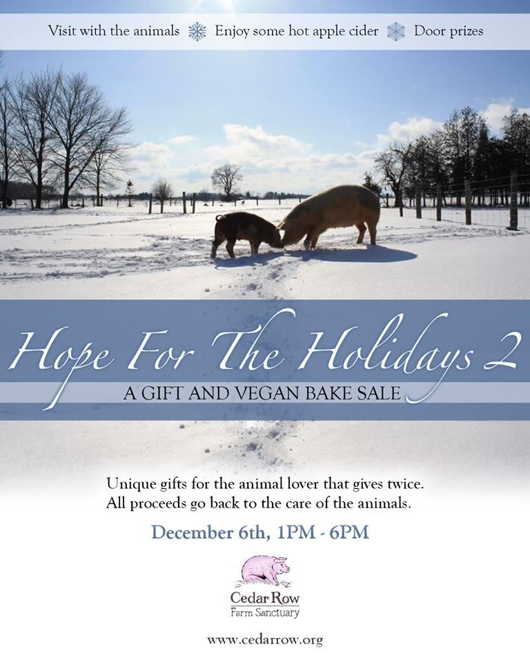 Hope for the Holidays at Cedar Row Farm Sanctuary