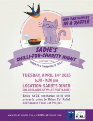 Chilli for Community Cats poster