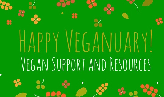 Veganuary and an offer of support smallery