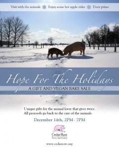 Home for the Holidays - Cedar Row Fundraiser