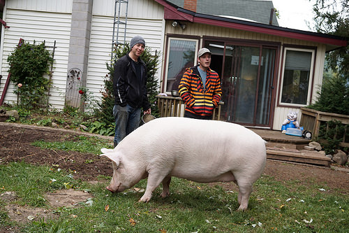Our Happily Ever Esther Farm Sanctuary Visit