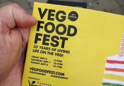 Toronto Vegfest 2019